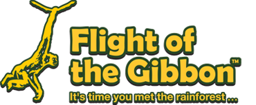 flight of the gibbon travel blogger