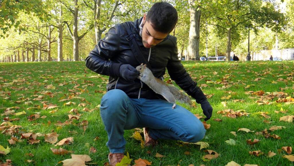 How To Save Money In London - Squirrelling at St James Park, London