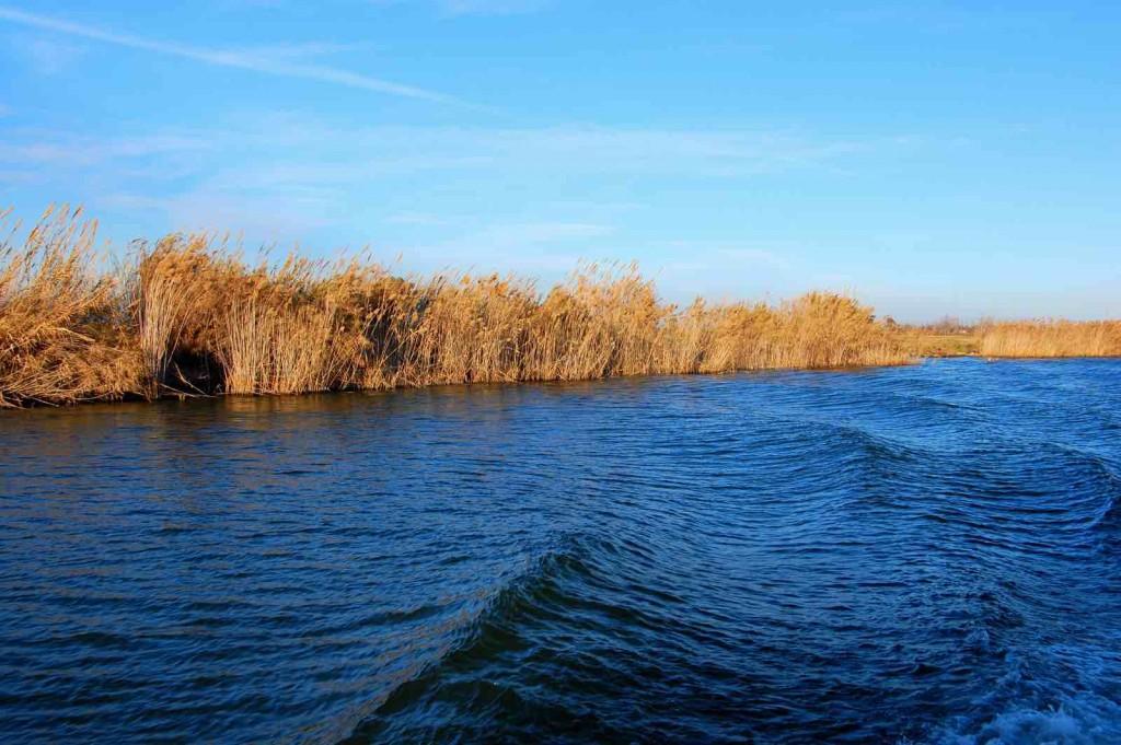 Tortosa And Ebro Delta - Delta del'Ebre