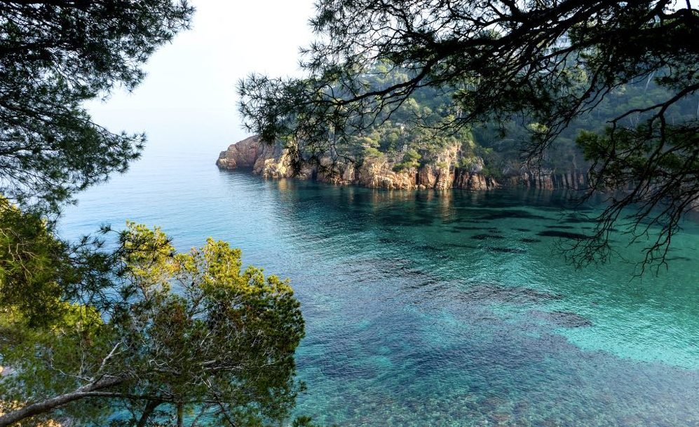best day trips from barcelona aiguablava costa brava getaway