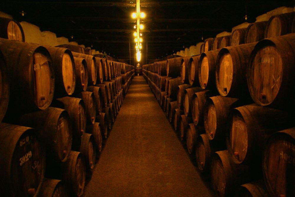 porto city guide wine cellars gaia