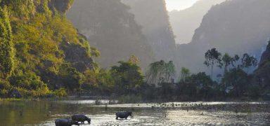 Ninh Binh: A Detailed Travel Guide to Vietnam's Hidden Gem