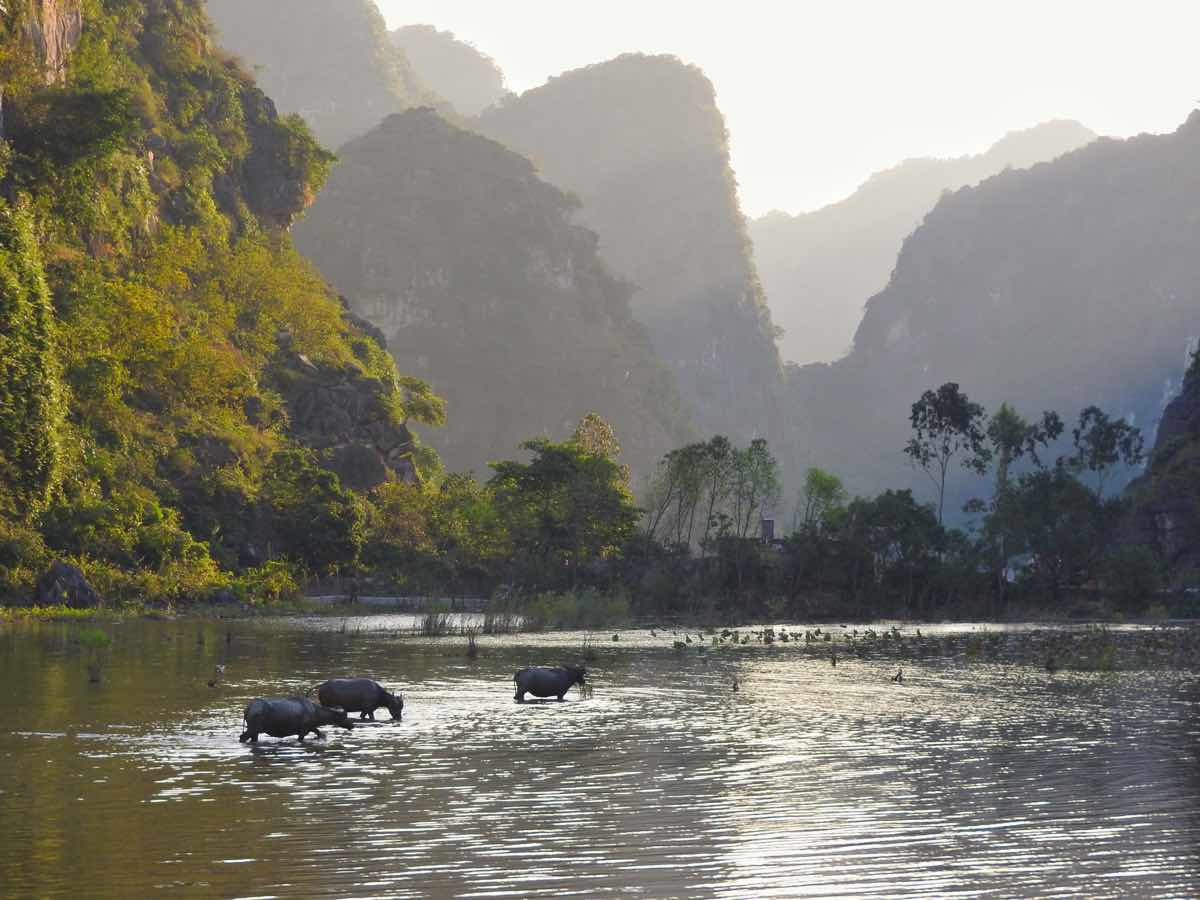 route ninh binh itinerary travel guide scenery