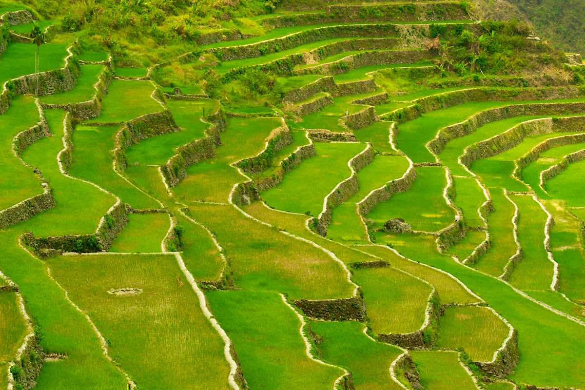 philippines reasons to visit rice terraces banaue