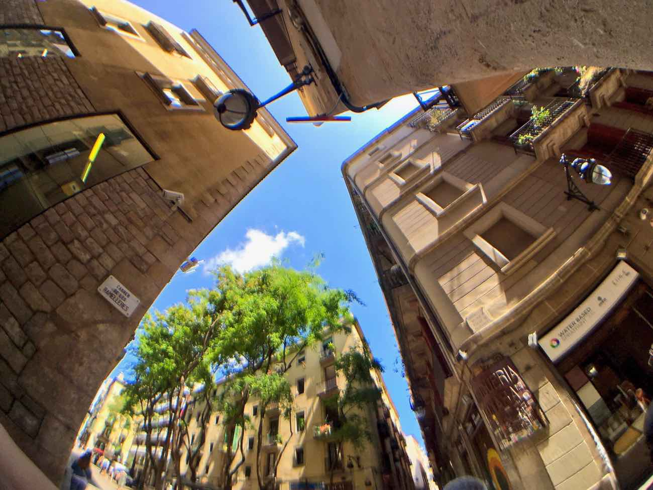 best smartphone camera lens pixter el raval