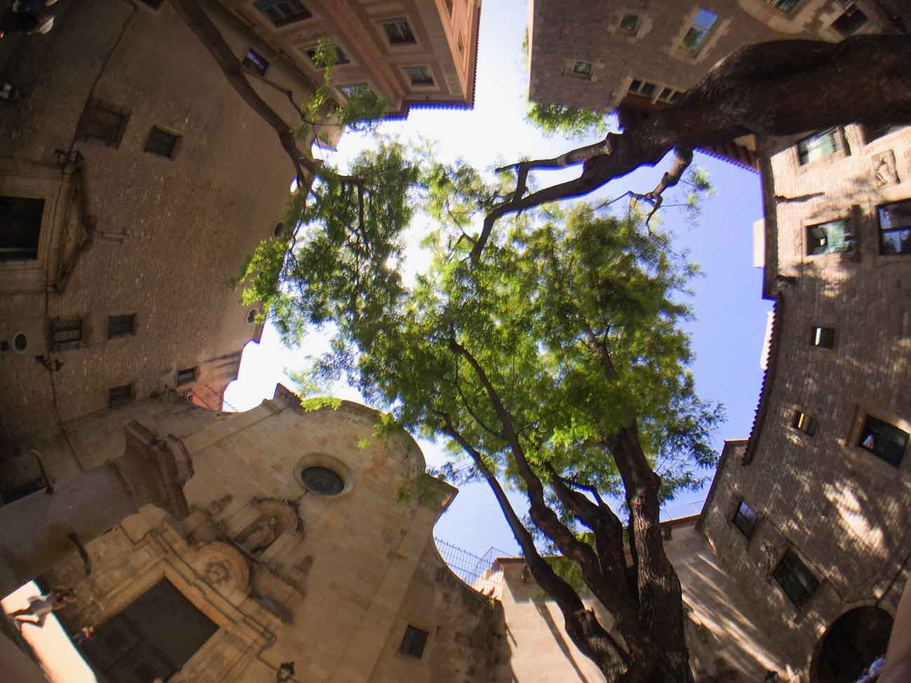 best smartphone camera lens review placa sant felipe neri