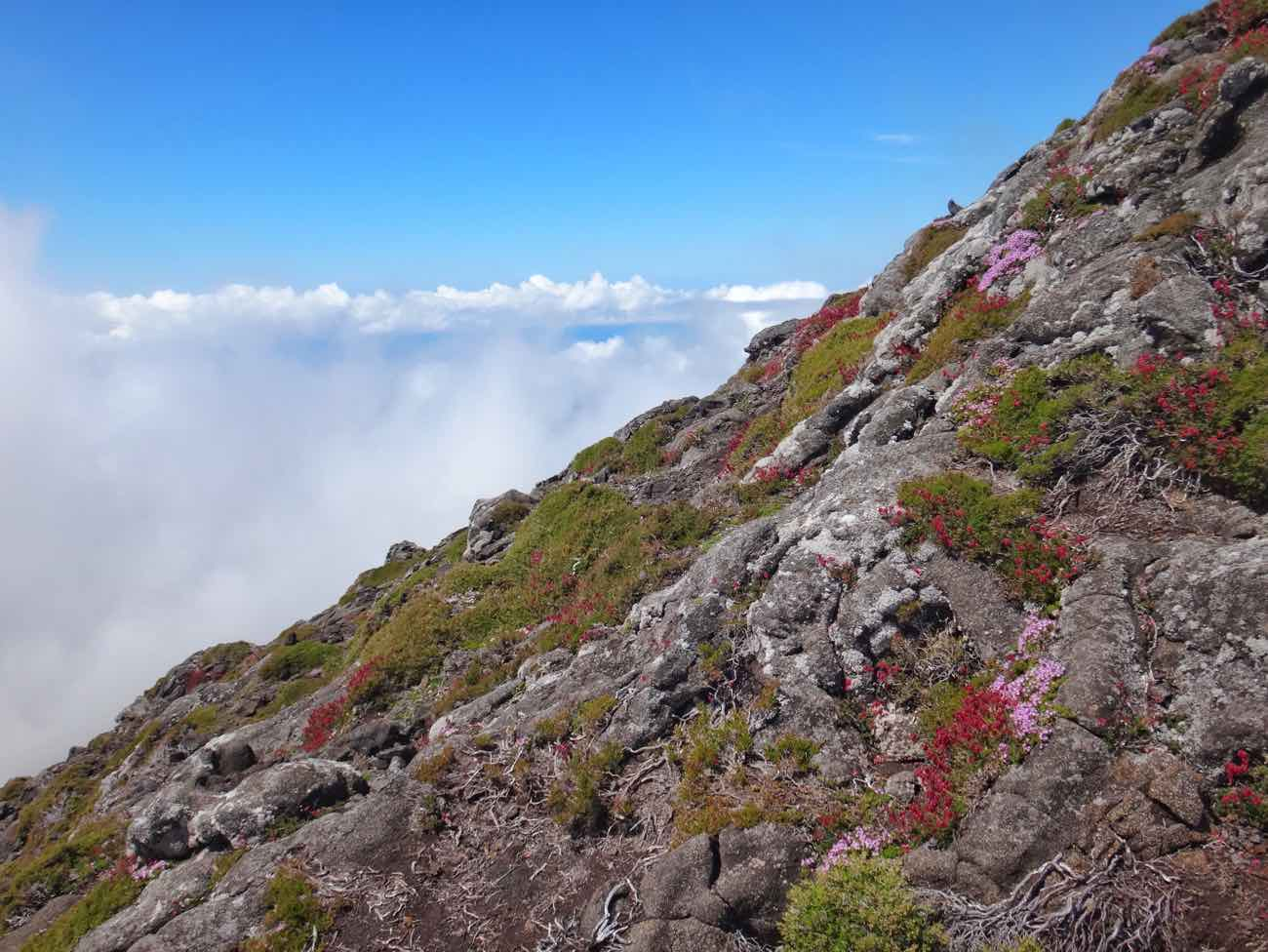climb mount pico azores guide hiking up clear