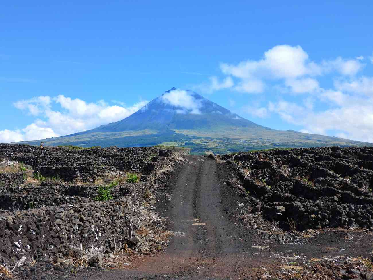 island pico travel guide mountain vineyards basalt