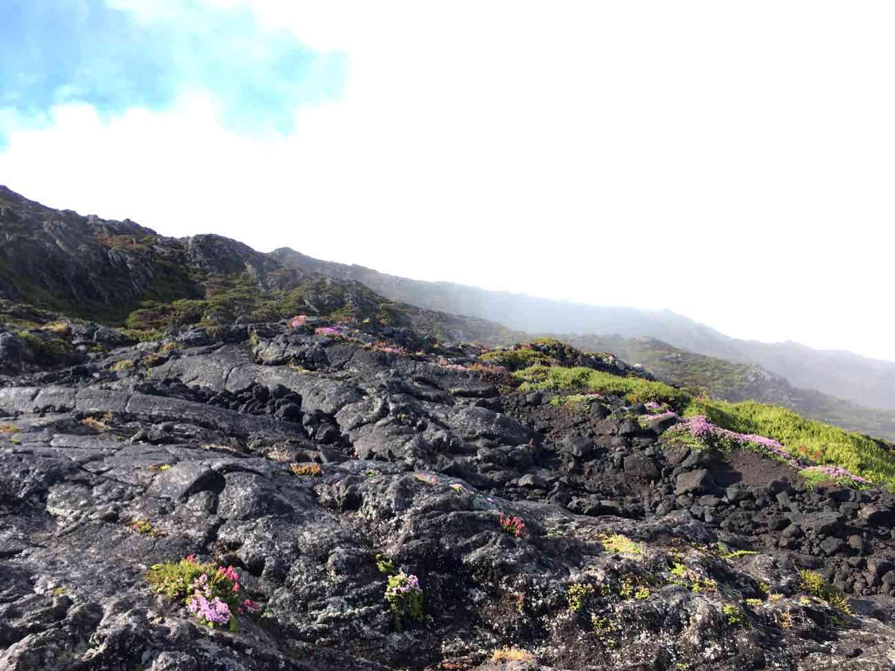 mount pico azores landscape scenery