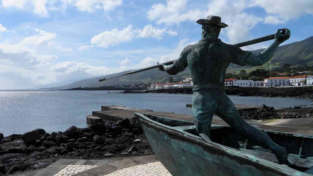 pico travel guide whaling industry whale watching azores