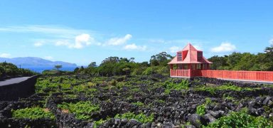 7 Unique Experiences and Things To Do in Pico Island, Azores