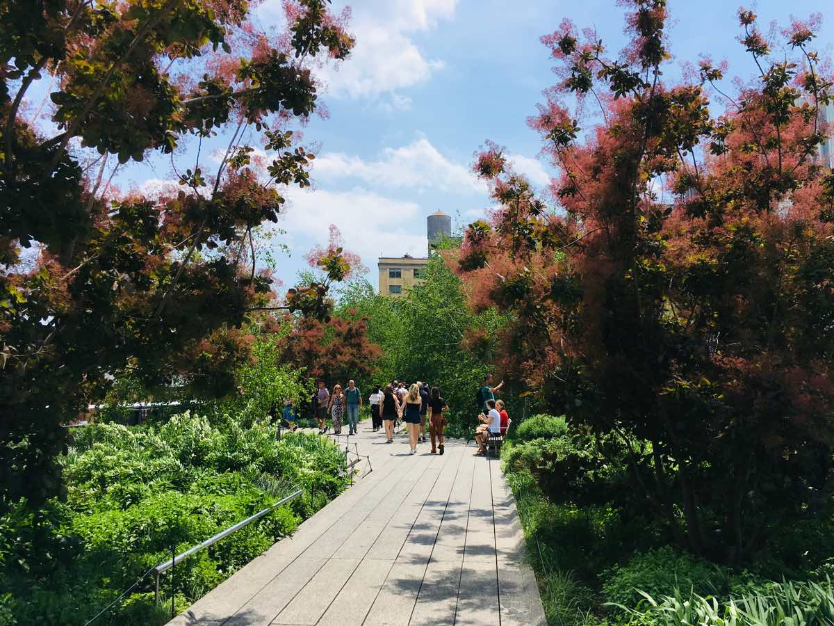 nyc-on-a-budget-high-line