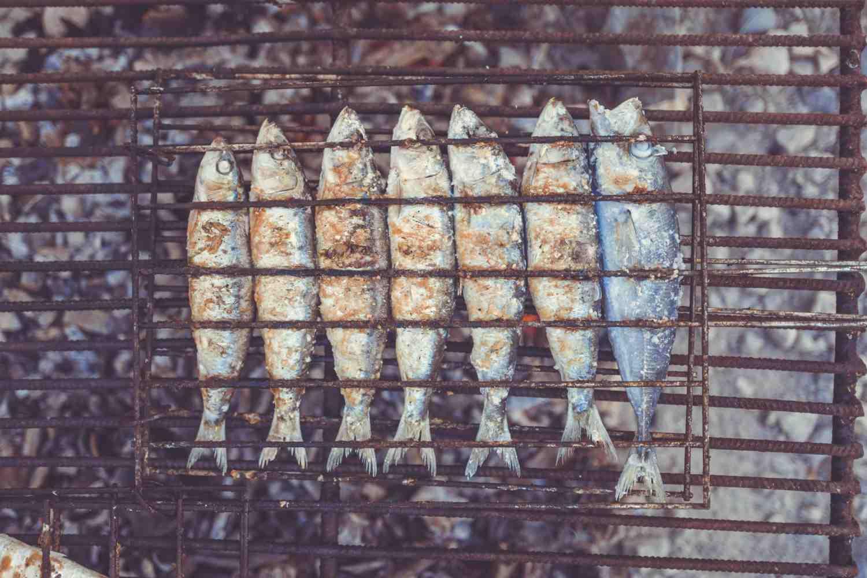 portugal road trip food sardines