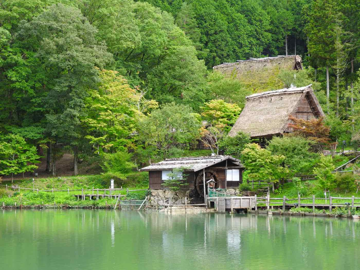 japan things to know nature folk village