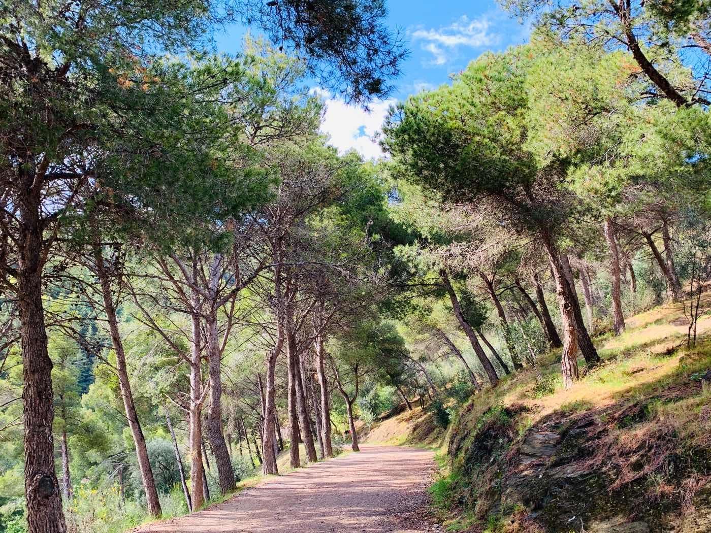 barcelona hidden gems forest trail Barcelona