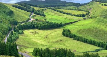 things to do in sao miguel azores green pastures