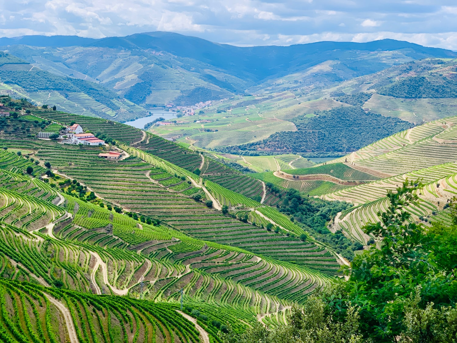 douro valley tips portugal