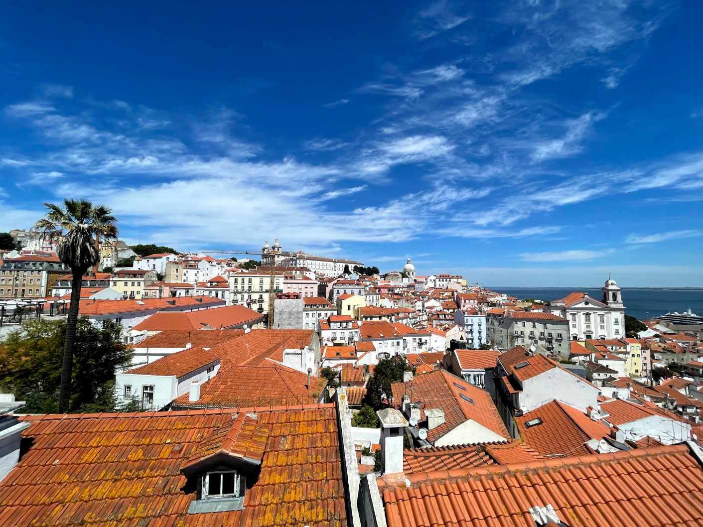 alfama lisbon rooftops