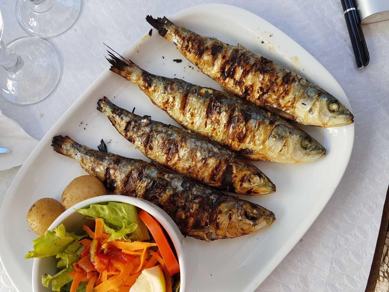 sardines lisbon